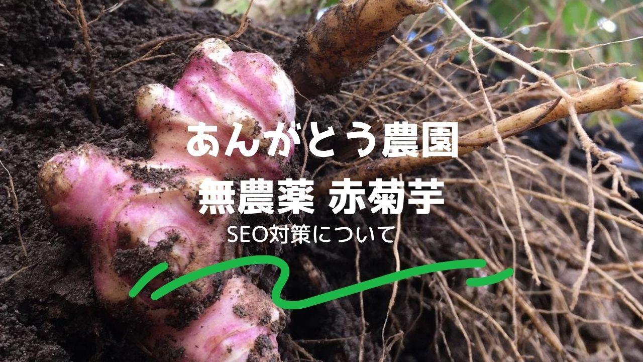 あんがとう農園無農薬赤菊芋のSEO対策について